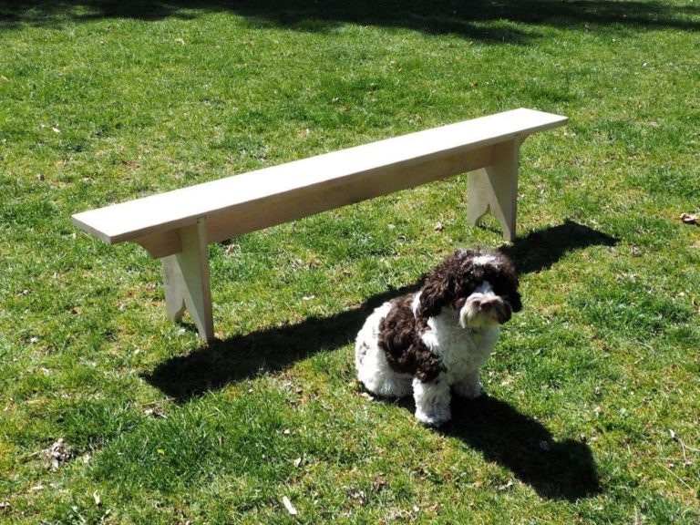 Fig. 25 - The final Bench with Biggles the bench dog